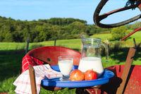 Milk at the farm