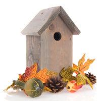 Birdhouse for birds in winter