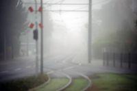 Straßenbahnschienen im Nebel