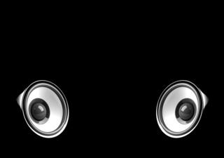 black audio system on the black