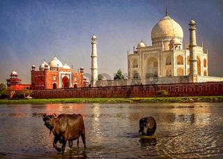 Taj Mahal and the river