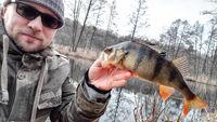Angler mit Barsch