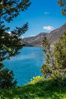 Summer landscape of the Bay of Kotor