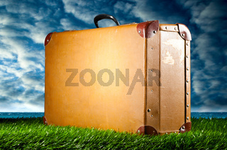 suitcase on grass