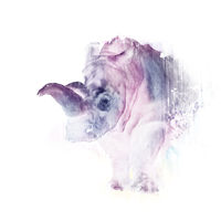 Watercolor rhinoceros on the white background