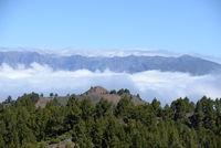 An der Vulkanroute, La Palma