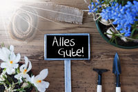 Sunny Spring Flowers, Sign, Alles Gute Means Best Wishes