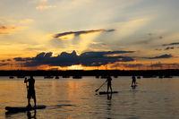 Drei Stand up Paddler im Starnberger See bei Sonnenuntergang