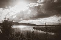 Rotorua lake, New Zealand. Black and white picture