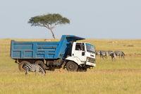 Truck driving on the savannah amongst wild animals