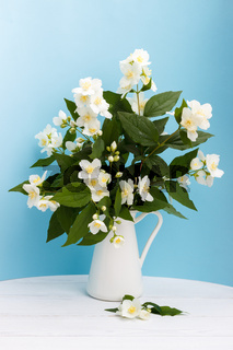 Fresh jasmine flowers in a vase