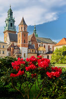 view on towers of castle wawel in poland