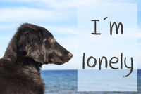 Dog At Ocean, Text I Am Lonely