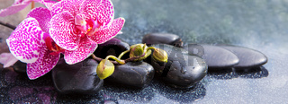 Spa concept with zen stones and orchid.