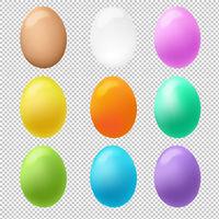 Colorful Eggs Big Set Transparent Background