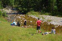 Sommernachmittag am Bach im Chocholowska Tal. West Tatra, Polen.