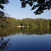 Am Liepnitzsee im Herbst