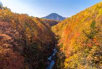 Nakatsugawa Fukushima Autumn