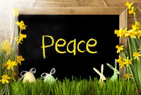 Sunny Narcissus, Easter Egg, Bunny, Text Peace