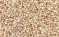 expanded buckwheat texture