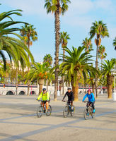 Group of bicyclist , Barcelona