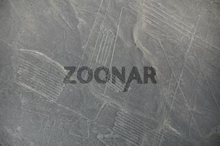 Aerial view of Nazca Lines geoglyphs in Peru.