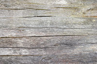 fibers on old oak wood plank ready for your design