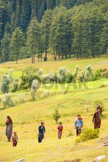 Kashmir Gypsy Goatherders Walking Hill