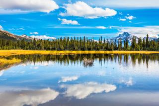 Shallow marshy lake