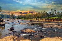 Elephant attraction river landscape of the jungle sunrise Sri Lanka