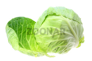 Cabbage on white.