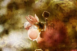Helle rosa Blüte mit Textur