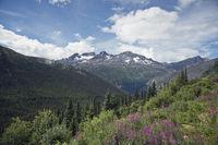 The scenery along the White Pass,Alaska