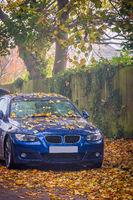 Car bonnet hood covered in fallen leaves