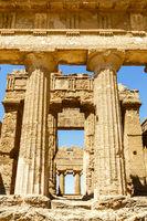 Condordiatempel, Tal der Tempel, Agrigent, Sizilien, Italien