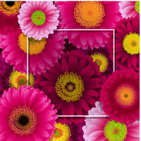 Flowers Border With Frame