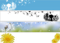 Dandelion Website Banner Collection