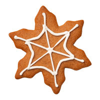 Halloween Gingerbread Cookie Spiderweb Isolated on White Background