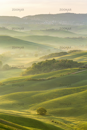 Valley in a rolling landscape with morning fog