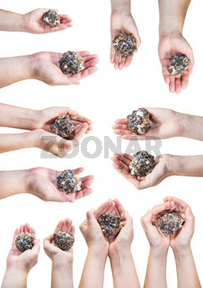set of various hands with natural mineral ore