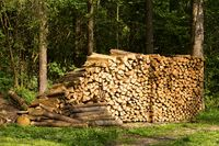 Preparation of firewood for the winter.