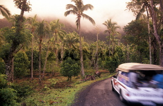Die Landschaft im tropischen Wald und im Gebierge ueber Mutsamudu auf der Insel Anjouan der Inselgruppe der Komoren im Indischen Ozea