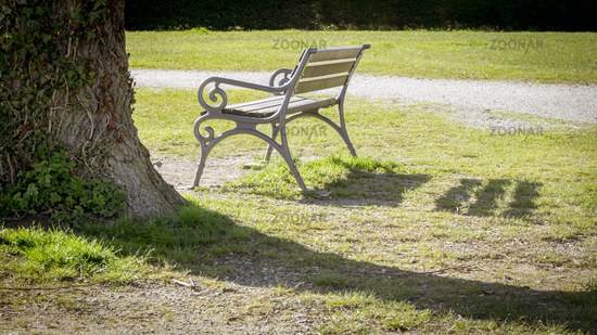 lonely bench in a park
