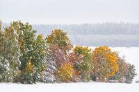 verschneiter Weg im Herbst