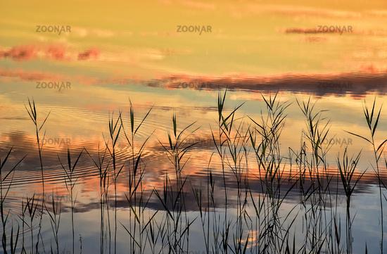 Sonnenuntergang am Ufer
