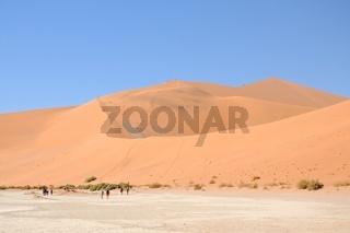 Sanddüne Big Daddy Namib Namibia