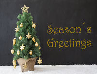 Christmas Tree, Text Seasons Greetings, Black Concrete