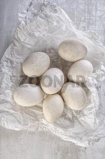 Fresh Duck Eggs