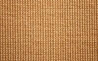 organic carpet from sisal for cat