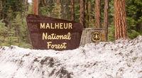 Makheaur National Forest Entrance Sign Oregon Wilderness